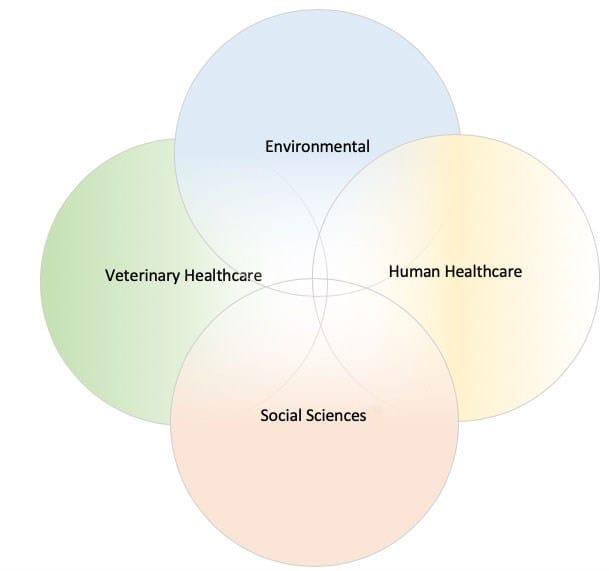 VetNOW Academia | 03 | Veterinary Telemedicine Platform for Veterinary Specialty Care | 1000 Noble Energy Drive, Suite 600 Pittsburgh, PA 15317 | https://testweb.vetnow.com/
